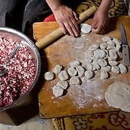 Mongolia. nomads, cattle breeders in the countryside near Lun, meal, preparation of the traditional BUUZ, little dumpling made with mutton, inside the yurt  Lun -   /  eleveurs nomades dans la steppe pres de Lun; repas , preparation du plat traditionnel a base de mouton, petits dumpling appeles Buuz, interieur de yourte  lun - Mongolie / B nomads, cattle breeders in the countryside near Lun, meal, preparation of the traditional BUUZ, little dumpling made with mutton, inside the yurt  Lun -   /  eleveurs nomades dans la steppe pres de Lun; repas , preparation du plat traditionnel a base de mouton, petits dumpling appeles Buuz, interieur de yourte  lun - Mongolie / B