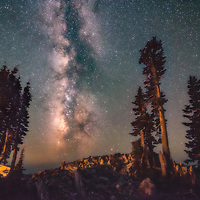 Milky Way with conifer trees in Lassen Volcanic National Park, California.