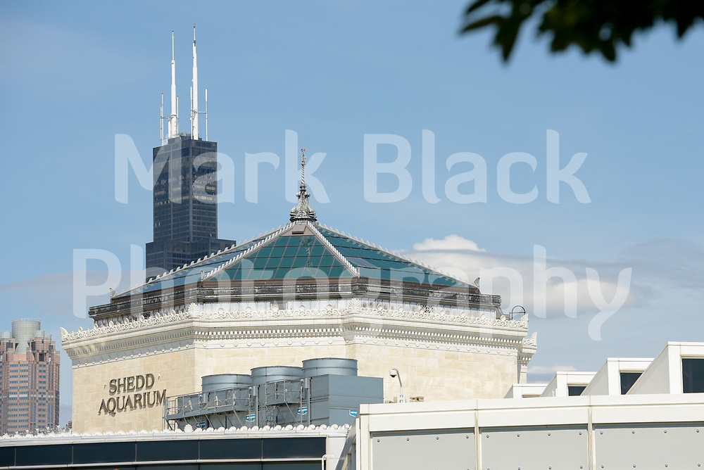 The Willis Tower better known at the Sears Tower rises from behind the John G. Shedd Aquarium along Lake Michigan in Chicago, Illinois.<br /> Photo by Mark Black