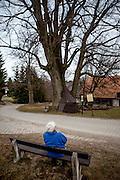 Die 82 jährige Vlasta Junkova rastet an der sogenannte Brüderlinde, deren Alter schätzungsweise 450 Jahre beträgt und mit der Brüderunität in Verbindung wird. Möglicherweise wurde sie gesetzt, als die Böhmischen Brüder 1547–1548 ihre Heimat verlassen mussten.