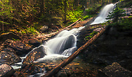 Wild river in Rila Mountains