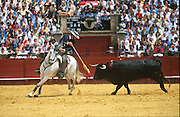 """Picador on horseback. Banderilleros. Bullfighting in Sevilla's famous bullring """"La Real Maestranza"""" is a significant part of the Feria de Abril..The Feria de abril de Sevilla, """"Seville April Fair"""" dates back to 1847. During the 1920s, the feria reached its peak and became the spectacle that it is today. It is held in the Andalusian capital of Seville in Spain. The fair generally begins two weeks after the Semana Santa, Easter Holy Week. The fair officially begins at midnight on Monday, and runs six days, ending on the following Sunday. Each day the fiesta begins with the parade of carriages and riders, at midday, carrying Seville's citizens to the bullring, La Real Maestranza...For the duration of the fair, the fairgrounds and a vast area on the far bank of the Guadalquivir River are covered in rows of casetas (individual decorated marquee tents which are temporarily built on the fairground). Some of these casetas belong to the prominent families of Seville, some to groups of friends, clubs, trade associations or political parties. From around nine at night until six or seven the following morning, at first in the streets and later only within each caseta, crowds of people party and dance Sevillanas, traditional Flamenco dances, Sevillan style drinking Jerez sherry, or Manzanilla wine, and eating tapas. .."""