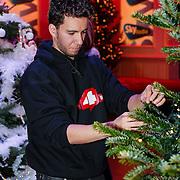 NLD/Hilversum/20121207 - Skyradio Christmas Tree, Ib Haarsma