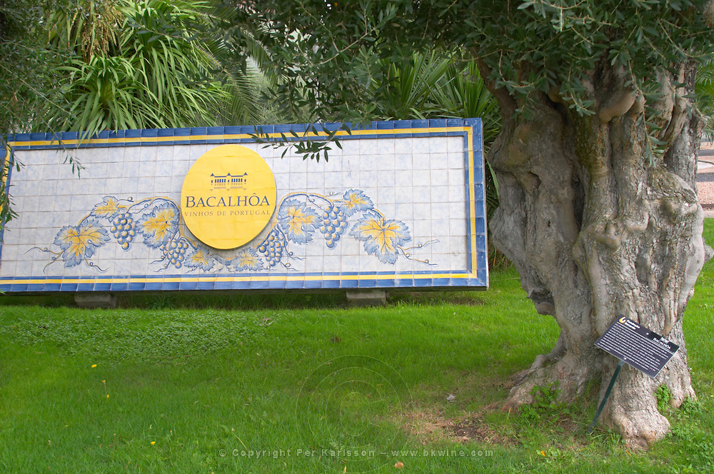 Sign at the winery in typical Portuguese enamelled tiles. Bacalhoa Vinhos, Azeitao, Portugal