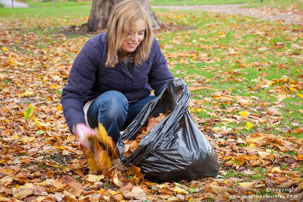 Making leaf mould using a bin bag - gathering leaves