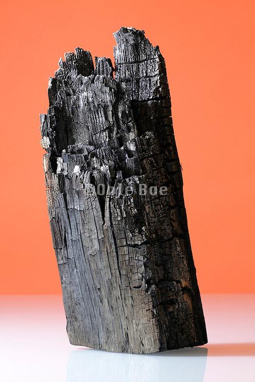 burned piece of wood