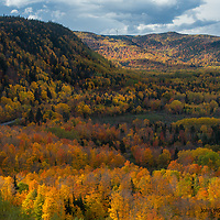 Fall trees in the mountains on the way to Cap Madeleine, Quebec.
