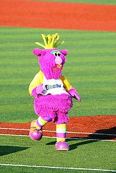 11 July 2012:  Reggy the Purple Party Dude with his boom box radio performs during the Frontier League All Star Baseball game at Corn Crib Stadium on the campus of Heartland Community College in Normal Illinois