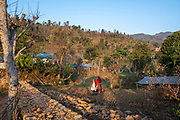 A woman wearing a red sari deliver a bag of compost to her field in the early morning sunshine on the 3rd of March 2020 in Raniswara, Ghairung, Gorkha, Nepal.