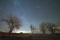 I was trying to capture meteors, but my camera caught a lot more satellites instead.