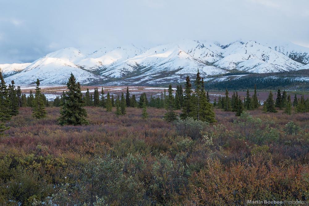 Storm clouds over The Alaska Range, Denali National Park, Alaska