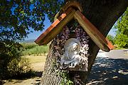 Religious icon grotto on tree by roadside at Pontignano in Chianti region of Tuscany, Italy