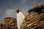 Mr Usher is a wood merchant selling wood from a stall that supplies building materials and fire timber in the 4 sq km Abo Shouk refugee camp which is (disputedly) home to 38,000 displaced persons and families on the outskirts of the front-line town of Al Fasher (also spelled, Al-Fashir) in north Darfur. .