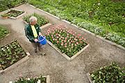 The Bulb Guy Rich Santoro maintains his 10,000 Spring bulb garden at his home in Berryessa, San Jose, California, on March 17, 2014. (Stan Olszewski/SOSKIphoto)
