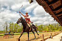 View of a brown horse and show jockey taken during the Lazar Equestrian Park show, Domonyvolgy, Hungary.