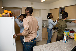 University students doing chores in shared accommodation kitchen,