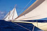 Kate sailing in the Windward Race at the Antigua Classic Yacht Regatta.