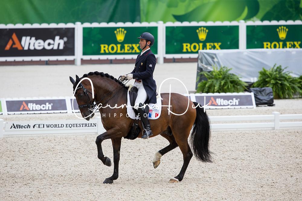 Arnaud Serre, (FRA), Robinson De Lafont De Massa - Grand Prix Team Competition Dressage - Alltech FEI World Equestrian Games™ 2014 - Normandy, France.<br /> © Hippo Foto Team - Leanjo de Koster<br /> 25/06/14