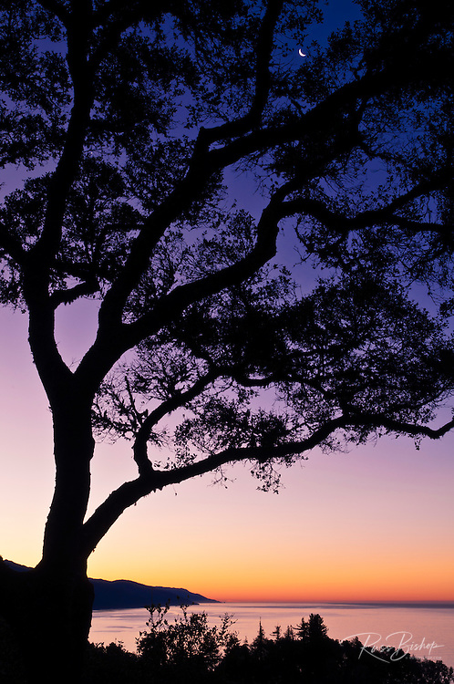 Crescent moon and dawn light over the Big Sur coast, California USA