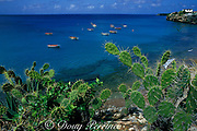 fishing boats at West Point Bay, Curacao, Netherlands Antilles, ( Caribbean Sea )