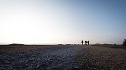 9 April 2018, Fårö, Gotland, Sweden: Flyfishing with Fish Your Dream, Sweden, on Fårö, north-east of the island of Gotland.