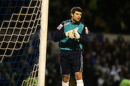 Cardiff city goal keeper Dimi Konstantopoulos. Coca Cola championship, Cardiff City v QPR match at Ninian Park in Cardiff on Wed 25th Feb 2009. pic by Andrew Orchard, Andrew Orchard sports photography.
