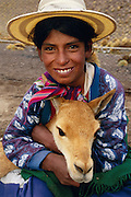 Girl holding wild Vicuna captured for shearing {Lama vicugna} SW Bolivia, South America - to benefit Guadalupe community Dept Potosi 4800m 2001