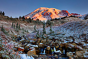 The banks of Edith Creek are dusted in light snow as the rising sun turns the summit of Mount Rainier a golden color in Mount Rainier National Park, Washington. Mount Rainier, with an elevation of 14,411 feet (4,392 meters), is the tallest mountain in Washington and the highest mountain in the Cascade Range. The creek is located in the Paradise section of the national park, an area known for lush meadows.