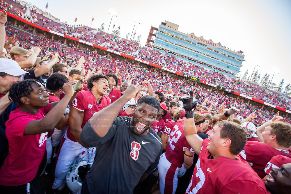 PALO ALTO, CA - OCTOBER 2:  Stanford Cardinal football players and fans celebrate on the field after the Stanford's 31-24 overtime victory over the Oregon Ducks in a Pac-12 college football game on October 2, 2021 at Stanford Stadium in Palo Alto, California; wearing black shirt is former Cardinal defensive lineman Wesley Annan, at right is Levi Rogers #57. (Photo by David Madison/Getty Images)