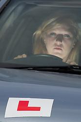 Learner driver