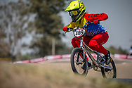 #469 (HERNANDEZ Stefany) VEN during practice at Round 9 of the 2019 UCI BMX Supercross World Cup in Santiago del Estero, Argentina