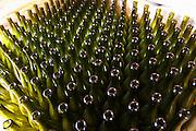 Domaine Le Conte des Floris, Caux. Pezenas region. Languedoc. Bottling and boxing line. France. Europe.