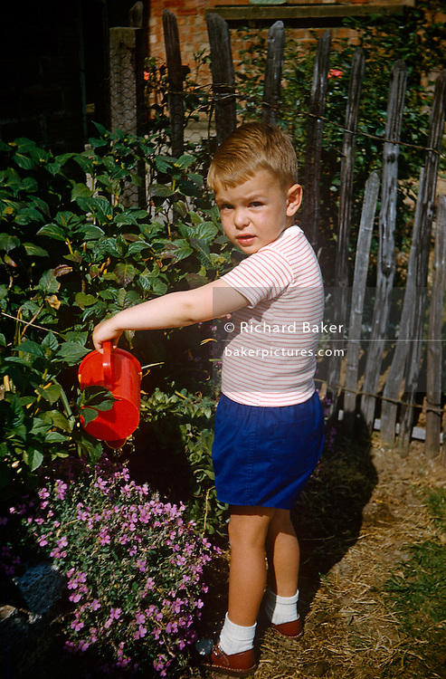 A young boy waters shrubs with a toy watering can in the family garden on an Essex estate in the early nineteen sixties.