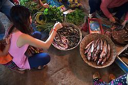 Woman Buying Snakes At Market