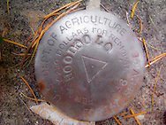 Hoodoo Fire Lookout survey benchmark in the Umatilla National Forest, Blue Mountains, Oregon, USA