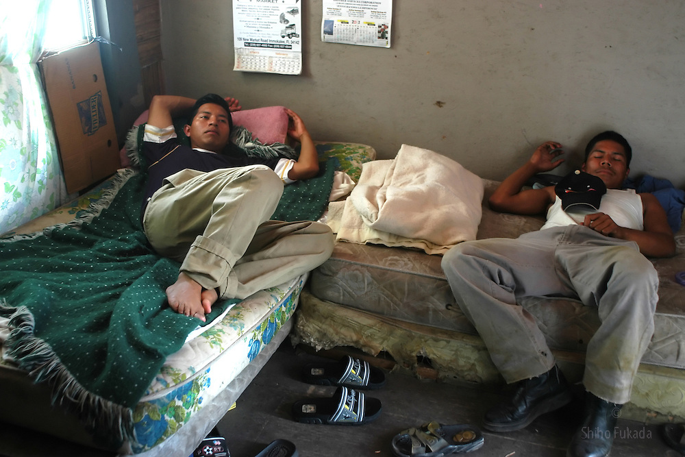 Migrant farm workers rest in  the trailer park they share in  Immokalee, FL, Apr. 16, 2003.
