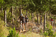 Riders during the 2018 FNB Wines2Whales Chardonnay 3 day mountain bike event stage 1 from Lourensford to Oak Valley. Image by Greg Beadle