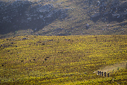 Riders during stage 1 of the 2017 Absa Cape Epic Mountain Bike stage race held from Hermanus High School in Hermanus, South Africa on the 20th March 2017<br /> <br /> Photo by Nick Muzik/Cape Epic/SPORTZPICS<br /> <br /> PLEASE ENSURE THE APPROPRIATE CREDIT IS GIVEN TO THE PHOTOGRAPHER AND SPORTZPICS ALONG WITH THE ABSA CAPE EPIC<br /> <br /> ace2016