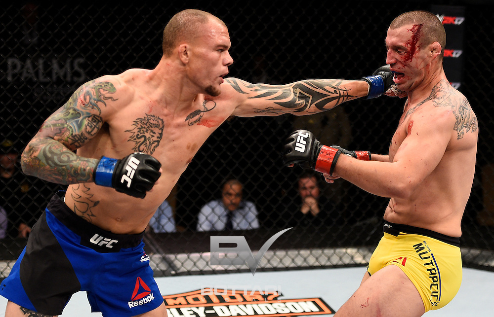 LAS VEGAS, NV - DECEMBER 03:  (L-R) Anthony Smith punches Elvis Mutapcic of Bosnia in their middleweight bout during The Ultimate Fighter Finale event inside the Pearl concert theater at the Palms Resort & Casino on December 3, 2016 in Las Vegas, Nevada. (Photo by Jeff Bottari/Zuffa LLC/Zuffa LLC via Getty Images)
