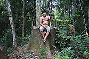Illegal logging by timber traffickers a few months. Rainforest canopy destroyed, timber and sawdust everywhere. Small trees and undergrowth damaged. Surui man looks at devastaion, his body is painted with traditional blue/black tattoos<br /><br />An Amazonian tribal chief Almir Narayamogo, leader of 1350 Surui Indians in Rondônia, near Cacaol, Brazil, with a $100,000 bounty on his head, is fighting for the survival of his people and their forest, and using the world's modern hi-tech tools; computers, smartphones, Google Earth and digital forestry surveillance. So far their fight has been very effective, leading to a most promising and novel result. In 2013, Almir Narayamogo, led his people to be the first and unique indigenous tribe in the world to manage their own REDD+ carbon project and sell carbon credits to the industrial world. By marketing the CO2 capacity of 250 000 hectares of their virgin forest, the forty year old Surui, has ensured the preservation, as well as a future of his community. <br /><br />In 2009, the four clans and 25 Surui villages voted in favour of a total moratorium on logging and the carbon credits project. <br /><br />They still face deforestation problems, such as illegal logging, and gold mining which causes pollution of their river systems