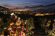 Impressionen von verschiedenen Weinbergen im Unterwallis an einem schönen Herbsttag.