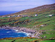 Coastal scenery and scattered settlement Dursey Head, Beara peninsula, County Cork, Ireland
