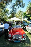 Austin-Healey 3000.<br /> Guildford Heritage Fair 2013