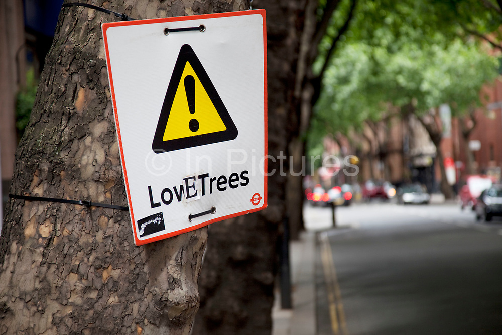 Warning sign for Low Trees on Shaftesbury Avenue that has been altered to say Love Trees. An example of social commentary, street art, and ecological / green thinking.