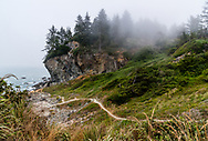 A foggy late summer afternoon at Patrick's Point State Park in Humboldt County, California