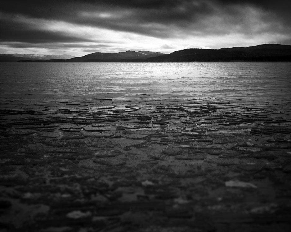 Ice Shards, Marsh Lake, YT