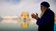 Sikh pilgrim in prayer and meditation at the Golden Temple in Amritsar, Punjab, India