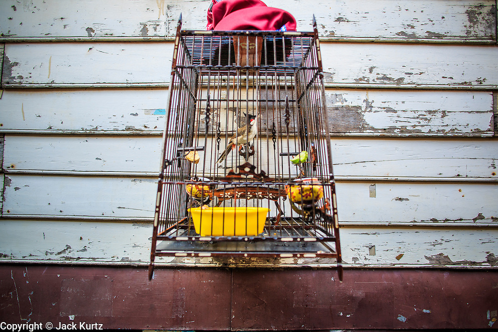 """10 JANUARY 2013 - BANGKOK, THAILAND:  A bird hangs on the exterior wall of a home in the Baan Krua neighborhood in Bangkok. The Ban Krua neighborhood of Bangkok is the oldest Muslim community in Bangkok. Ban Krua was originally settled by Cham Muslims from Cambodia and Vietnam who fought on the side of the Thai King Rama I. They were given a royal grant of land east of what was then the Thai capitol at the end of the 18th century in return for their military service. The Cham Muslims were originally weavers and what is known as """"Thai Silk"""" was developed by the people in Ban Krua. Several families in the neighborhood still weave in their homes.   PHOTO BY JACK KURTZ"""