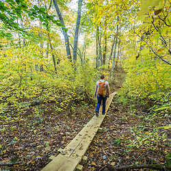 A young woman walking in the woods in Marshfield, Massachusetts. Hoyt-Hall Preserve.
