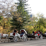 NEW YORK, NEW YORK - NOVEMBER 4: Horse-Drawn Carriages tour Central Park with sightseers during the fall season. Horse-Drawn Carriages provide a wonderful way to experience the beauty of Central Park, Manhattan, New York. They can be found all year round lined up along Central Park South between 5th and 6th Avenues waiting for customers. Central Park, Manhattan, New York. 4th November 2017. (Photo by Tim Clayton/Corbis via Getty Images)